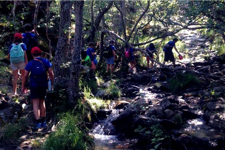 Compañerismo y naturaleza en el campamento